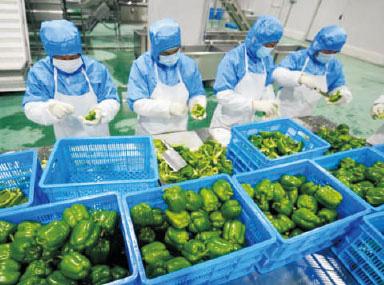 无锡新鲜农产品配送有哪些重点?